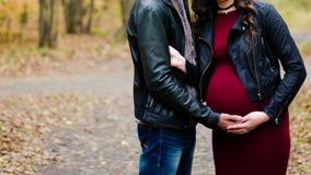Femme enceinte de embrassement d'homme en bois d'automne Photographie stock libre de droits