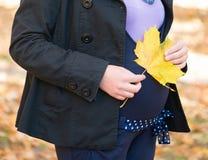 Femme enceinte en stationnement d'automne Images libres de droits
