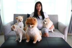 Femme enceinte et animaux familiers mignons de chien pomeranian dans le salon Photographie stock