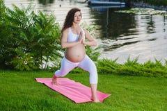Femme enceinte faisant le yoga prénatal sur la nature photographie stock libre de droits