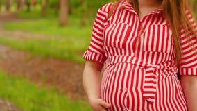 Femme enceinte heureuse frottant le ventre marchant dans la fin de forêt vers le haut du tir banque de vidéos