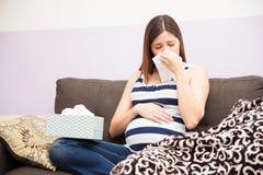 Femme enceinte soufflant son nez images libres de droits