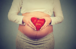 Femme enceinte tenant le coeur avec je t'aime l'inscription Photo libre de droits