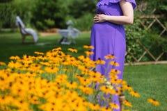 Femme enceinte tenant ses mains sur sa bosse de bébé Photos stock
