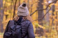 Femme entrant dans la forêt d'automne photos stock