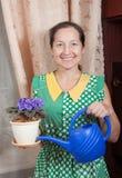 Femme entretenant la fleur mise en pot Photos libres de droits