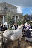 Femme et âne femelle dans des décorations de Pâques à Moscou Photographie stock libre de droits
