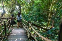 Femme et années de l'adolescence marchant sur la voie en bois photos stock