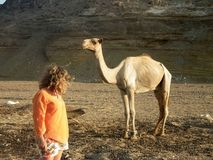 Femme et chameau africain Photo stock