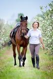 Femme et cheval de baie dans le jardin de pomme Cheval et belle marche de dame extérieurs Image libre de droits
