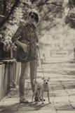 Femme et chien Image stock