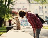 Femme et chien Photos stock