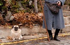 Femme et chien supérieurs Image libre de droits