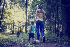 Femme et enfant marchant un chien dans la forêt Photo stock