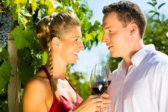 Femme et homme en vin potable de vignoble Image libre de droits