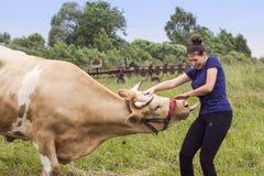 femme-et-une-vache-55878715