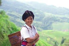 Femme ethnique de Yao sur les gisements de riz Photographie stock libre de droits