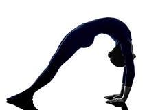 Femme exerçant la silhouette de yoga de pose de pont d'Urdhva Dhanurasana images libres de droits