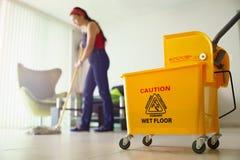 Femme faisant des corvées nettoyant le foyer de plancher à la maison sur le seau image libre de droits