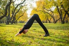 Femme faisant le yoga en parc d'automne Photo stock