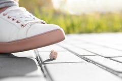 Femme faisant un pas dans le chewing-gum sur le trottoir Photos libres de droits