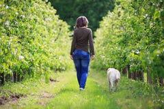 Femme flânant avec son chien Images stock