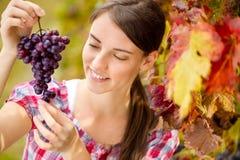 Femme gaie regardant le raisin de table images stock
