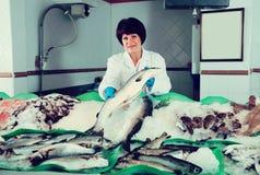 Femme gaie vendant les poissons effrayants dans le magasin Images libres de droits