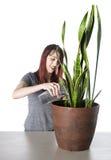 Femme heureuse arrosant une plante verte dans un pot Photographie stock