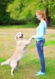 Femme heureuse de propriétaire jouant avec le chien de golden retriever sur l'herbe Images stock
