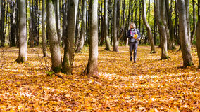Femme heureuse marchant en parc d'automne Photographie stock