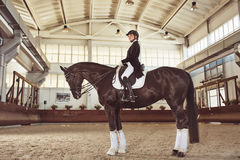 Femme jockey de femme avec son cheval images stock