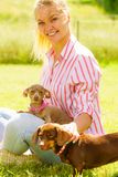 Femme jouant avec de petits chiens dehors Images libres de droits