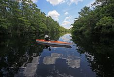 Femme kayaking sur la crique de Fisheating, la Floride photographie stock libre de droits