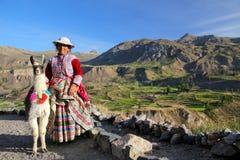 Femme locale avec le lama se tenant au canyon de Colca au Pérou Photo libre de droits