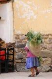 Femme locale marchant avec le keperina plein de l'herbe dans la rue de Photo libre de droits