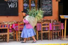 Femme locale marchant avec le keperina plein de l'herbe dans la rue de Image libre de droits