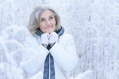 Femme mûre en hiver posant dehors Photo libre de droits