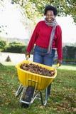 Femme mûre rassemblant des lames dans le jardin image stock