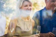Femme mûre de sourire avec des amis tenant des verres à vin Photographie stock