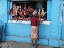 Femme malgache indigène Images stock