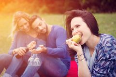 Femme mangeant la poire avec des amis au pique-nique Images libres de droits