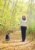 Femme marchant avec le chiot noir de chien d'arrêt de Labrador Photos stock