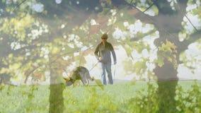 Femme marchant avec un chien de guide banque de vidéos