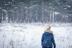 femme marchant en bois d'hiver avec la chute de neige photos stock