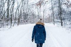 Femme marchant en bois d'hiver image libre de droits