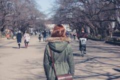 Femme marchant en parc d'Ueno Photos stock