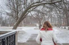 Femme marchant en parc en hiver avec la chute fraîche de neige photos libres de droits