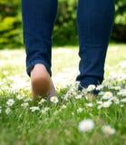 Femme marchant en parc nu-pieds Image stock