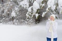 Femme marchant en stationnement de l'hiver Photo stock